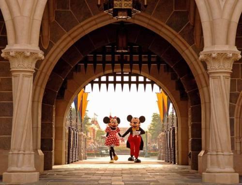 与迪士尼乐园为邻