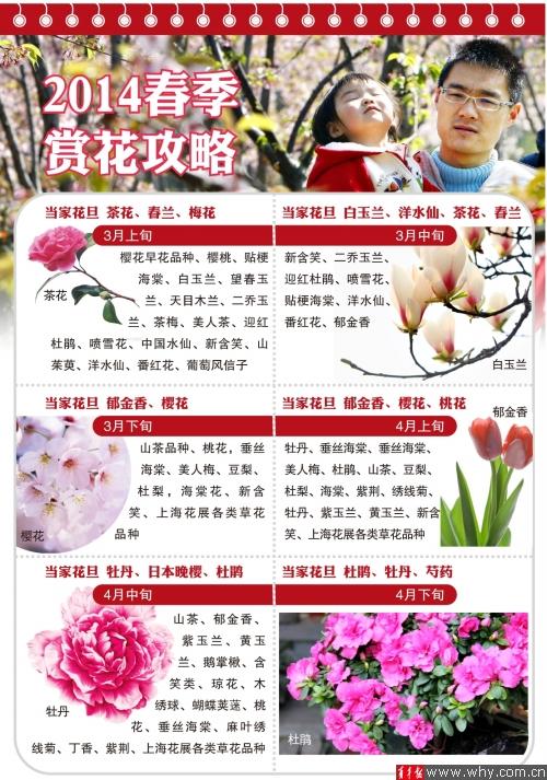 上海植物园春季赏花攻略